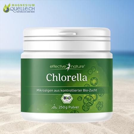 Chlorella Pulver BIO 250 g