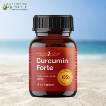 Curcumin Forte 60 Kapseln