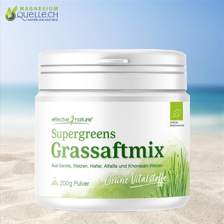 Grassaft Mix Pulver Bio 200 g