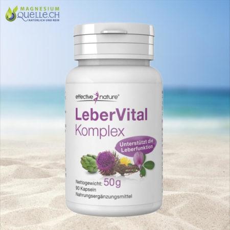 LeberVital Komplex kaufen