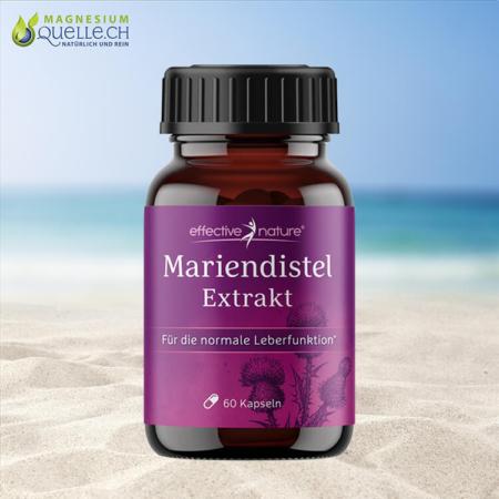 Mariendistel Extrakt 60 Kapseln
