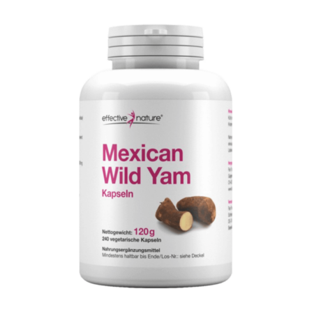Mexican Wild Yam – Yamswurzel 240 Kapseln kaufen