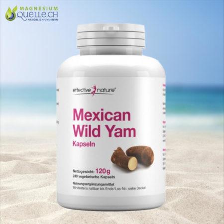 Mexican Wild Yam kaufen