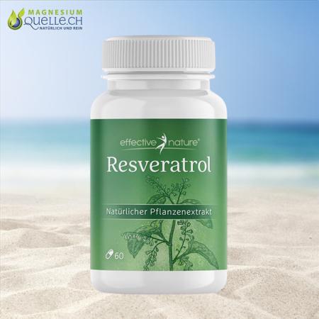 Resveratrol 60 Kapseln