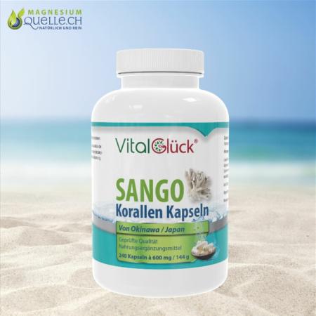 Sango Korallen 240 Kapseln 144 g