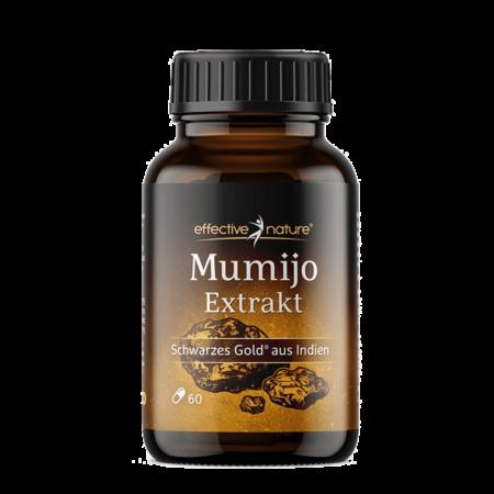 Schwarzes Gold – Mumijo und Koriander-Extrakt Kapseln