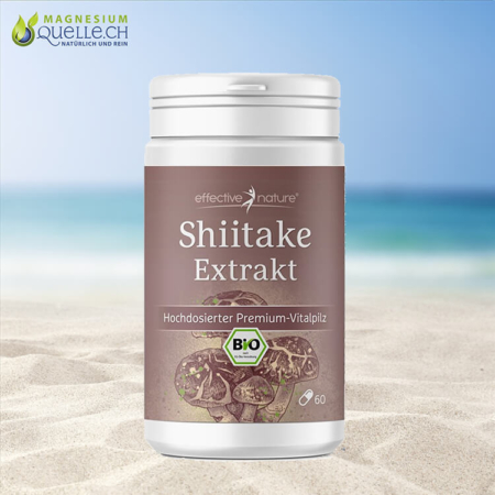 Shiitake Extrakt BIO 60 Kapseln