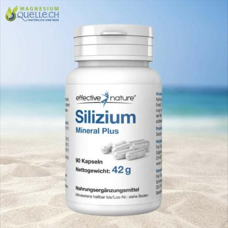 Silizium Kapseln Mineral Plus 90 Stk kaufen