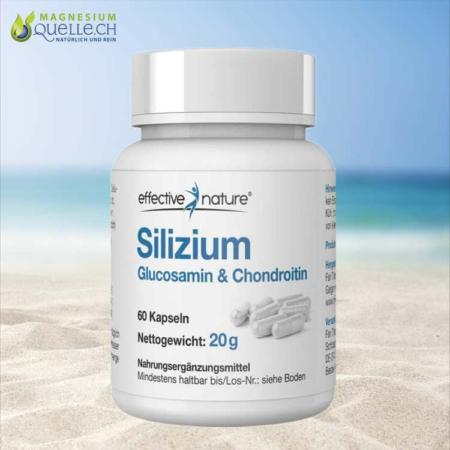 Silizium Kapseln mit Glucosamin Chondroitin 60 Stk kaufen